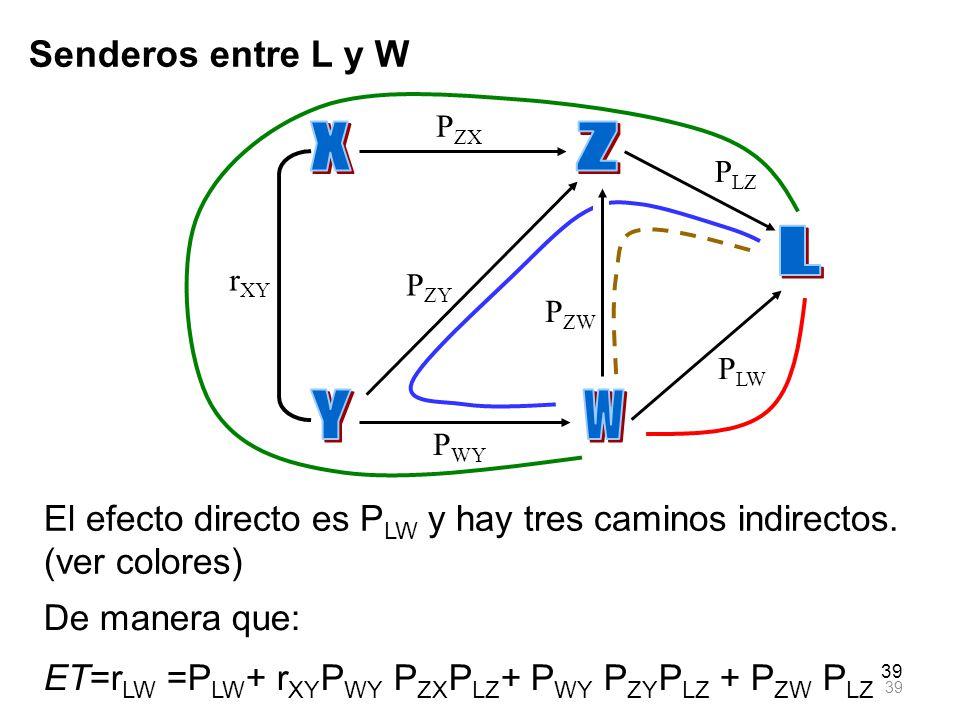 X Y Z W L Senderos entre L y W