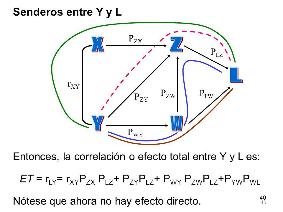 X Z L Y W Senderos entre Y y L