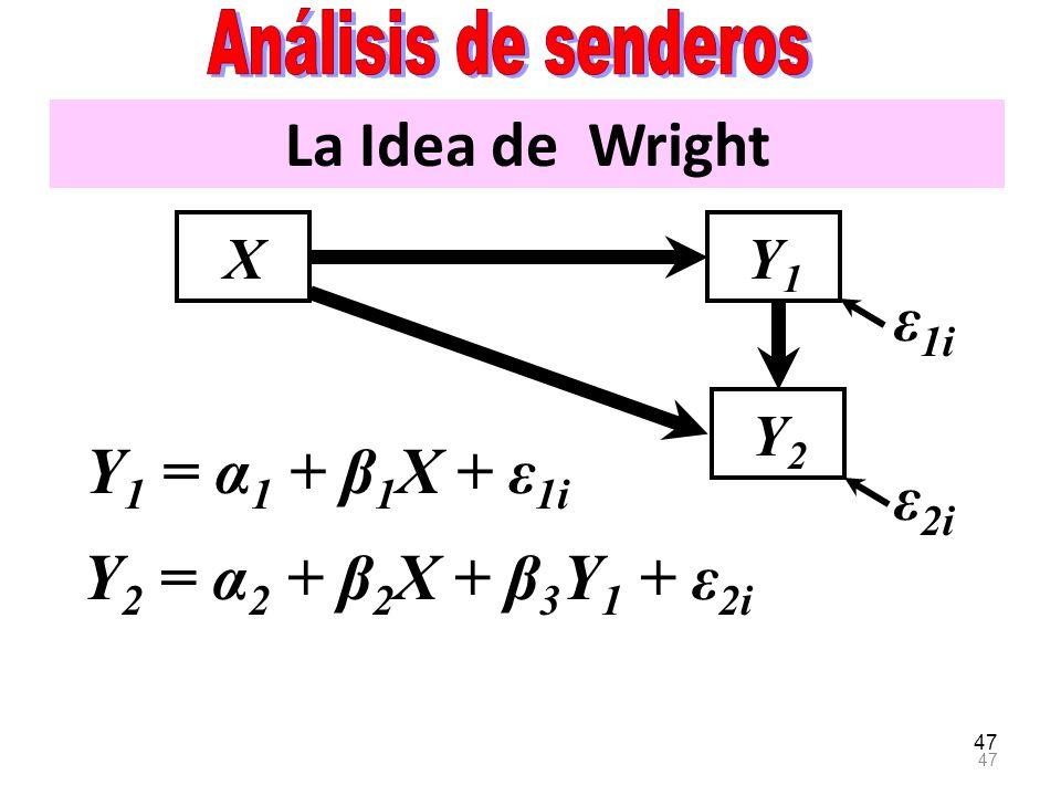 La Idea de Wright ε1i Y1 = α1 + β1X + ε1i ε2i
