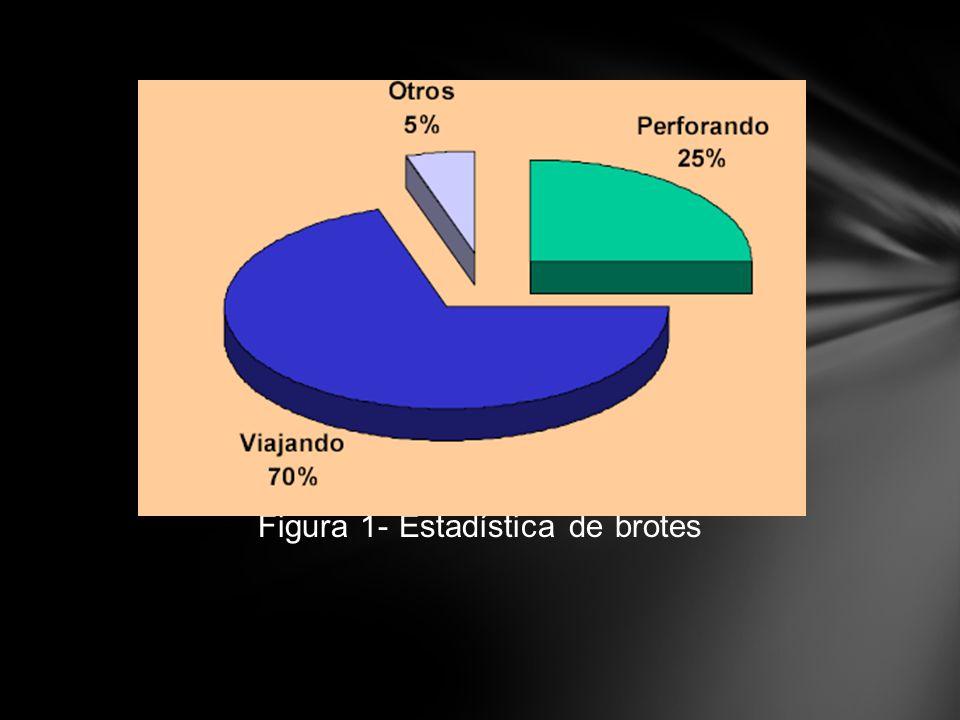 Figura 1- Estadística de brotes