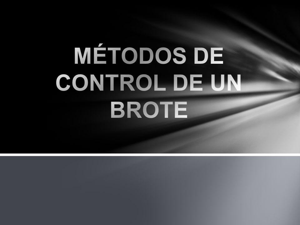 MÉTODOS DE CONTROL DE UN BROTE