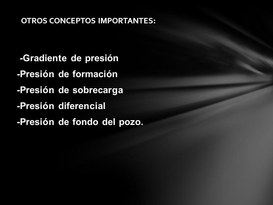 OTROS CONCEPTOS IMPORTANTES: