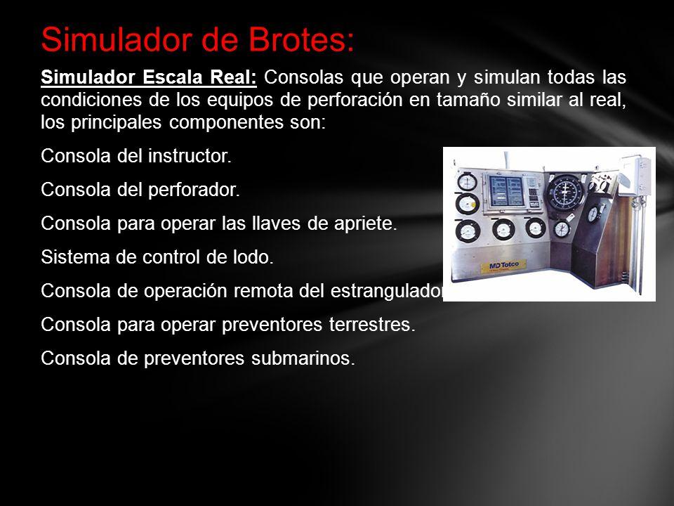 Simulador de Brotes:
