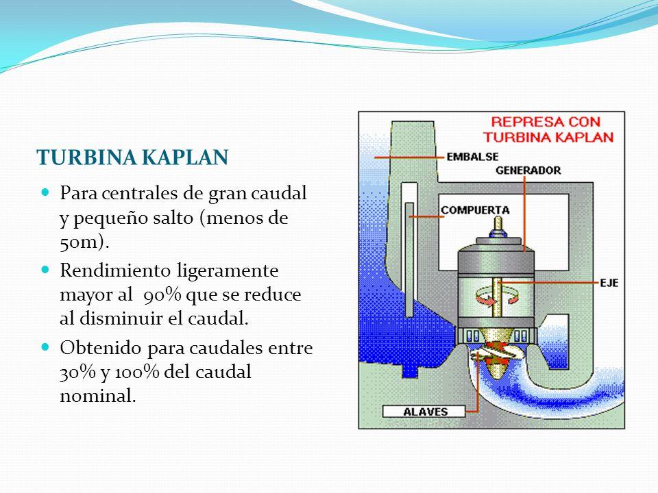 TURBINA KAPLAN Para centrales de gran caudal y pequeño salto (menos de 50m).