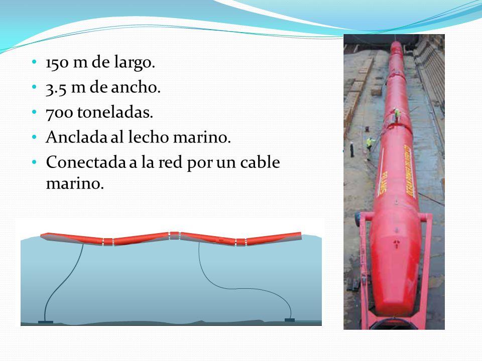 150 m de largo. 3.5 m de ancho. 700 toneladas. Anclada al lecho marino.