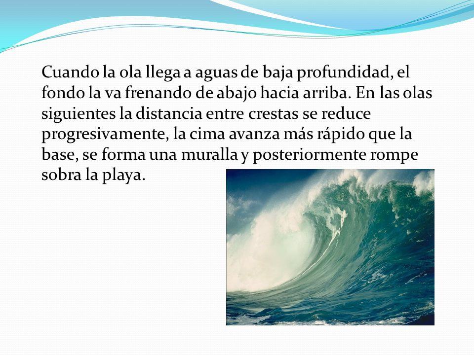 Cuando la ola llega a aguas de baja profundidad, el fondo la va frenando de abajo hacia arriba.