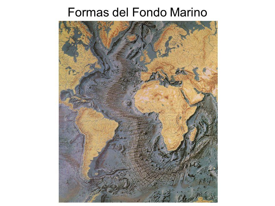Formas del Fondo Marino