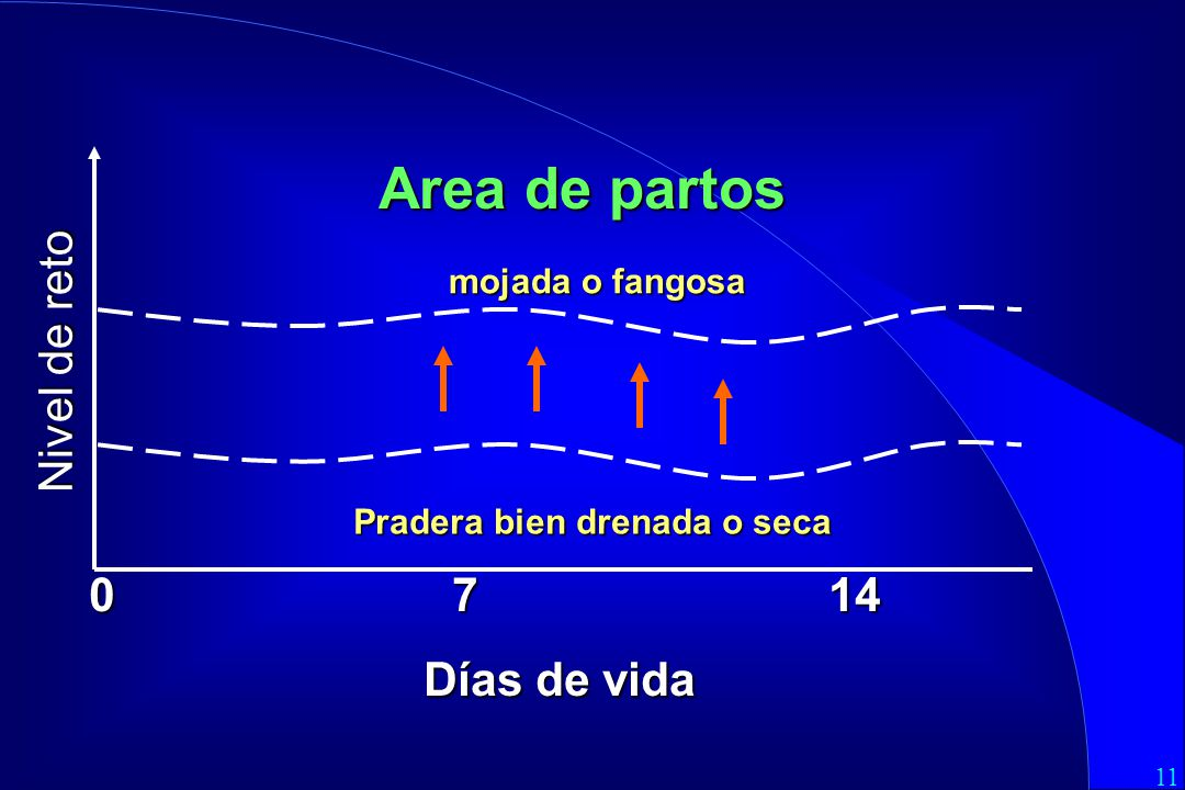Area de partos Nivel de reto 0 7 14 Días de vida mojada o fangosa