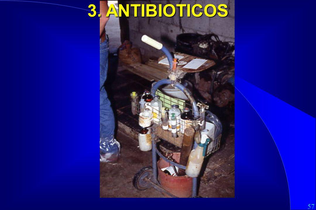 3. ANTIBIOTICOS