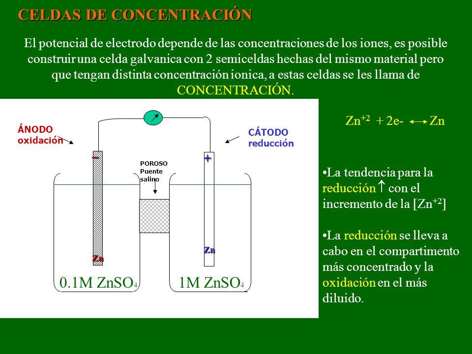 CELDAS DE CONCENTRACIÓN