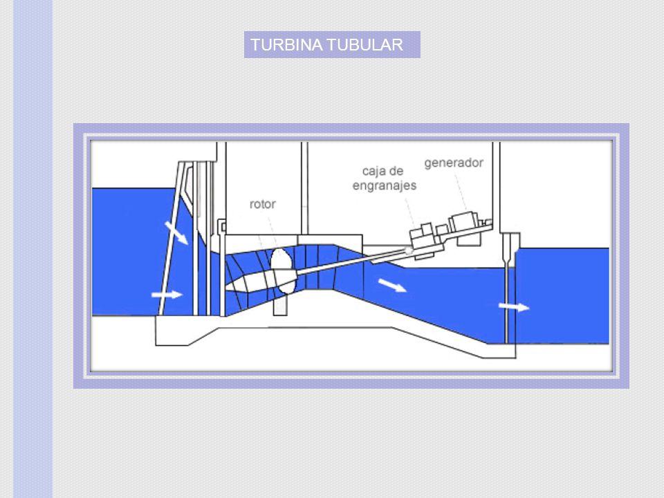 TURBINA TUBULAR