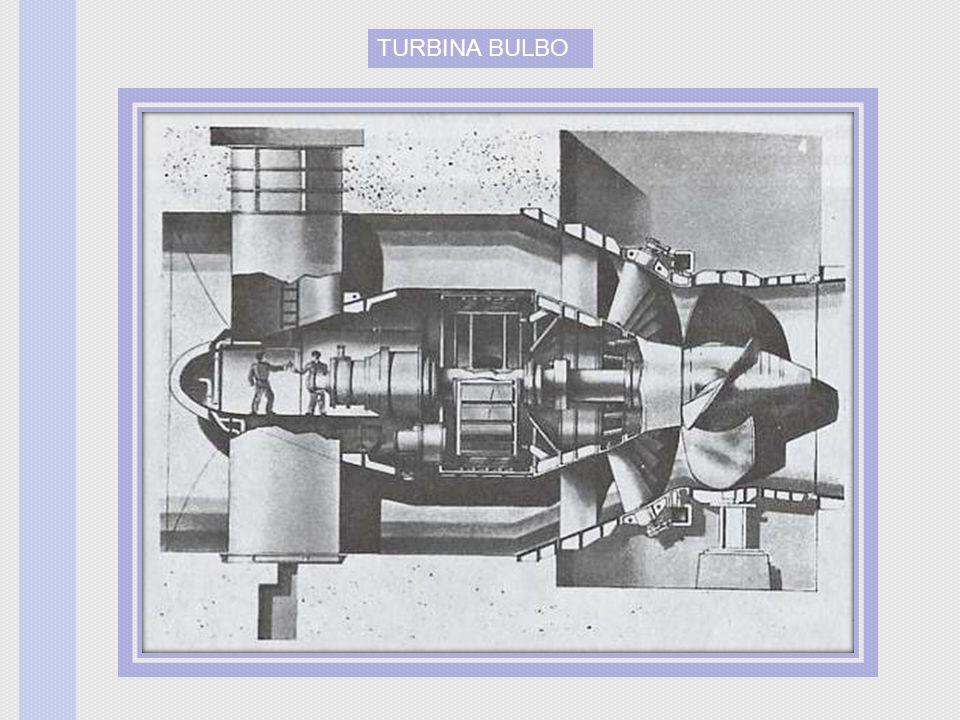 TURBINA BULBO
