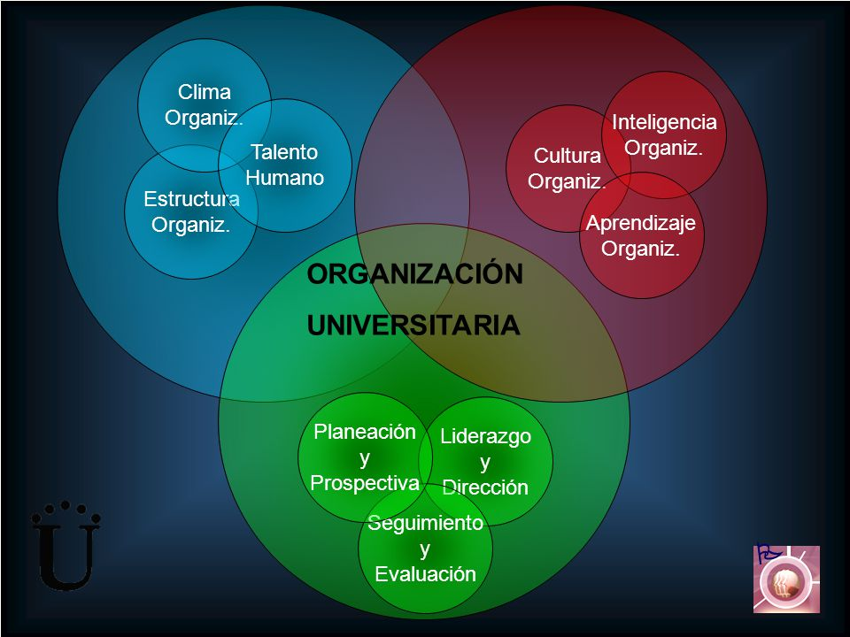 ORGANIZACIÓN UNIVERSITARIA  Clima Organiz. Inteligencia Organiz.