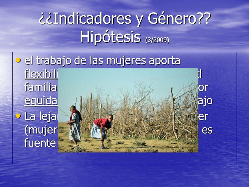 ¿¿Indicadores y Género Hipótesis (3/2009)
