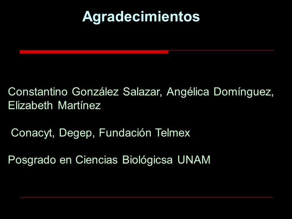 Agradecimientos Constantino González Salazar, Angélica Domínguez, Elizabeth Martínez Conacyt, Degep, Fundación Telmex.