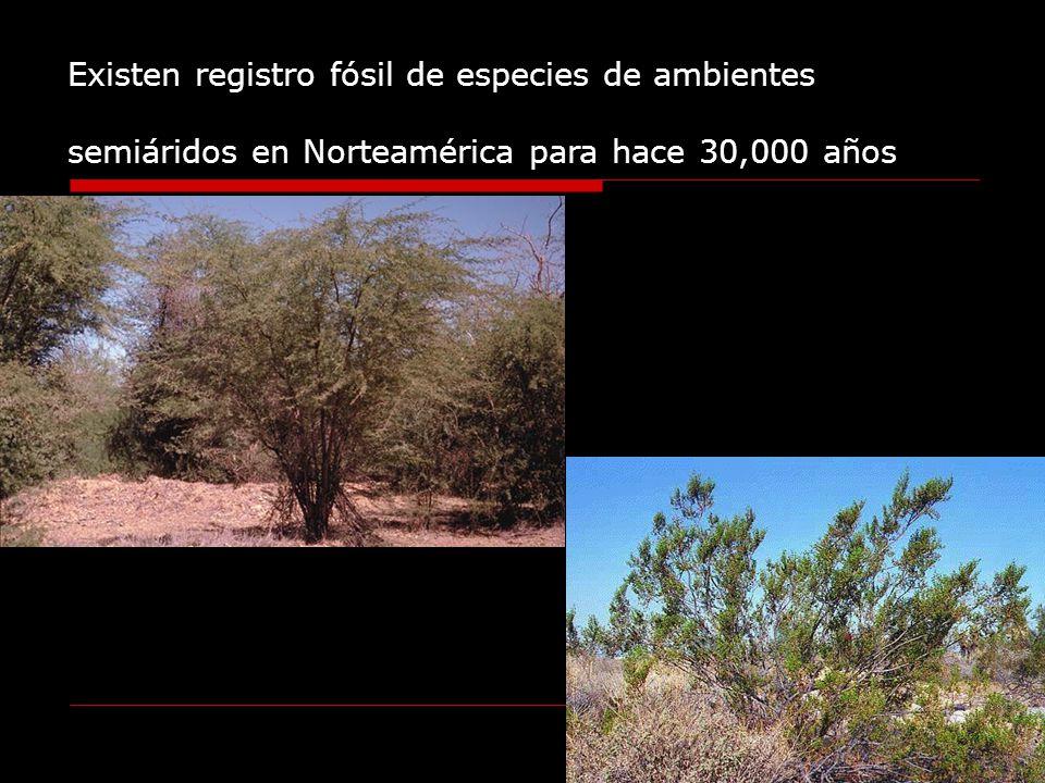 Existen registro fósil de especies de ambientes