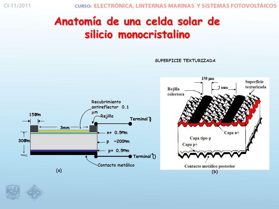 Anatomía de una celda solar de silicio monocristalino