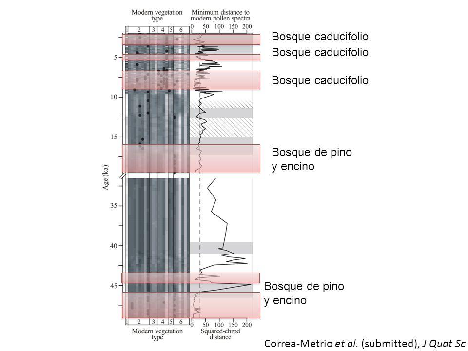 Bosque de pino y encino Bosque caducifolio Correa-Metrio et al. (submitted), J Quat Sc