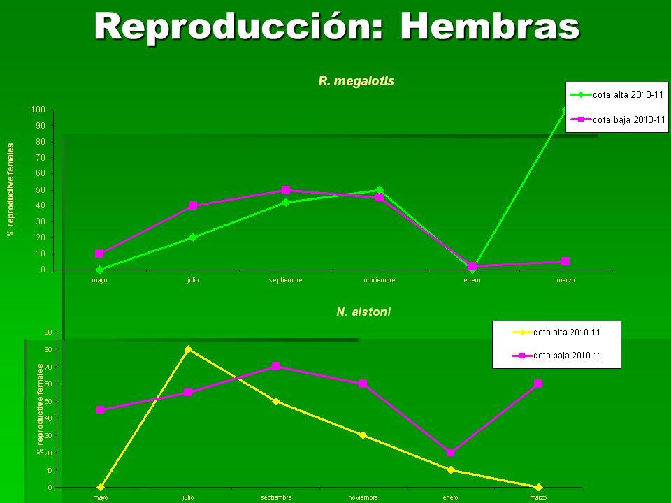 Reproducción: Hembras