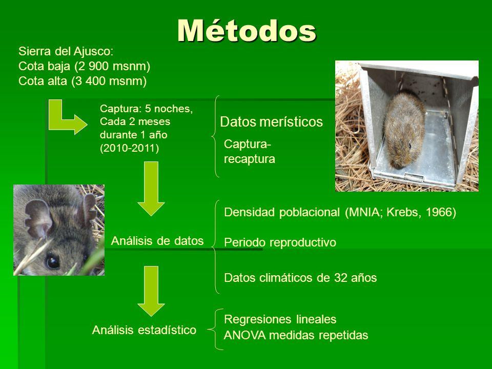 Métodos Datos merísticos Sierra del Ajusco: Cota baja (2 900 msnm)