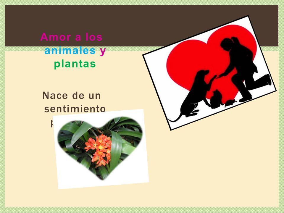 Amor a los animales y plantas Nace de un sentimiento protector.