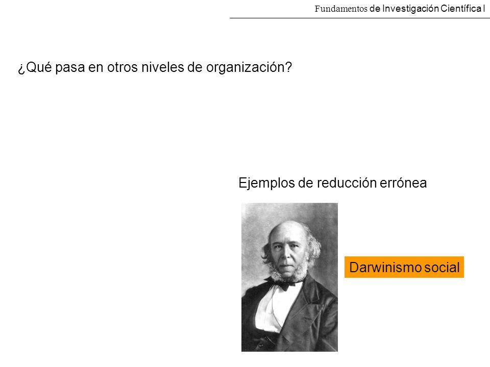 ¿Qué pasa en otros niveles de organización
