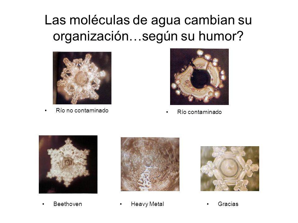 Las moléculas de agua cambian su organización…según su humor