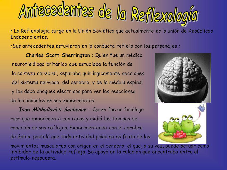 Antecedentes de la Reflexología