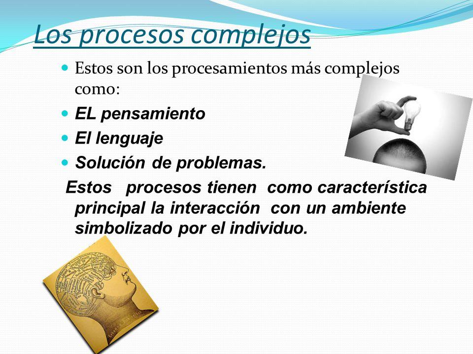 Los procesos complejos