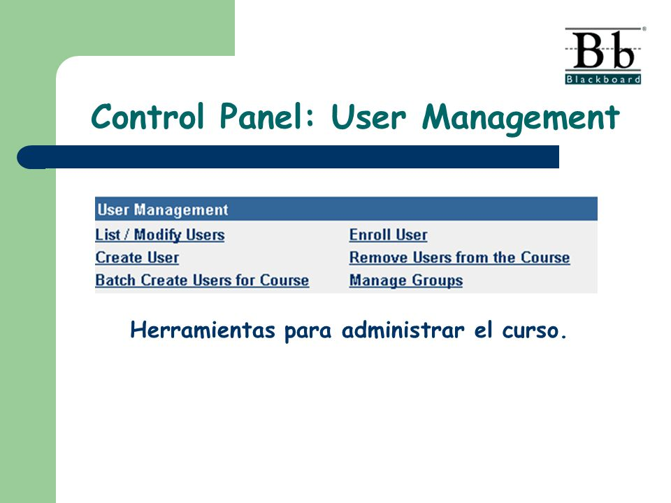Control Panel: User Management