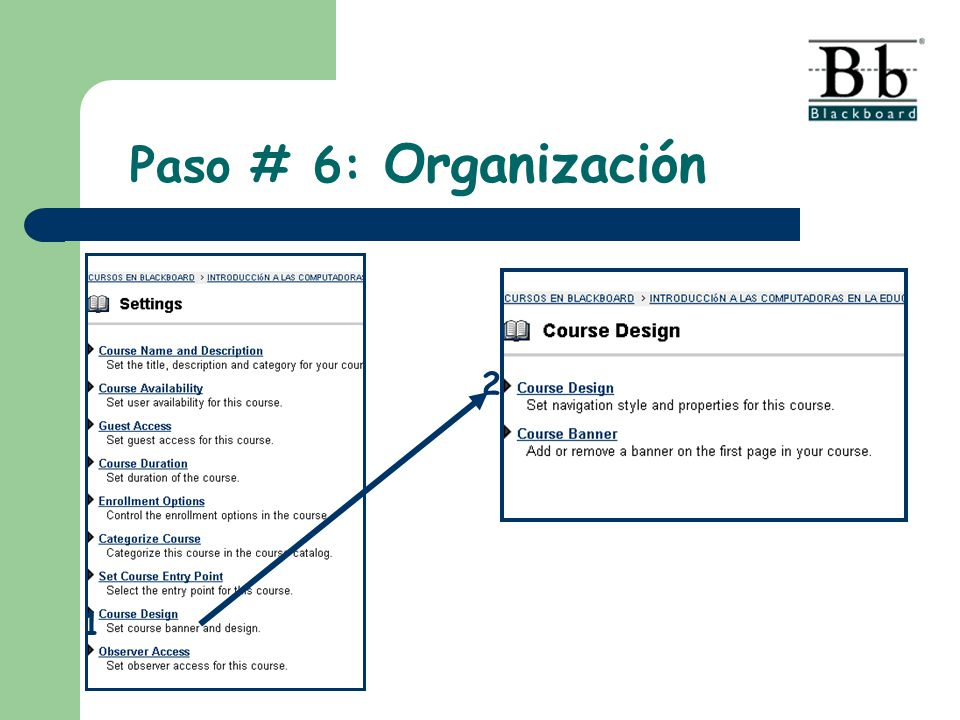 Paso # 6: Organización 2 1