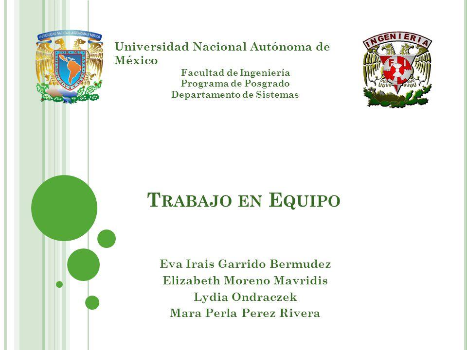 Trabajo en Equipo Universidad Nacional Autónoma de México