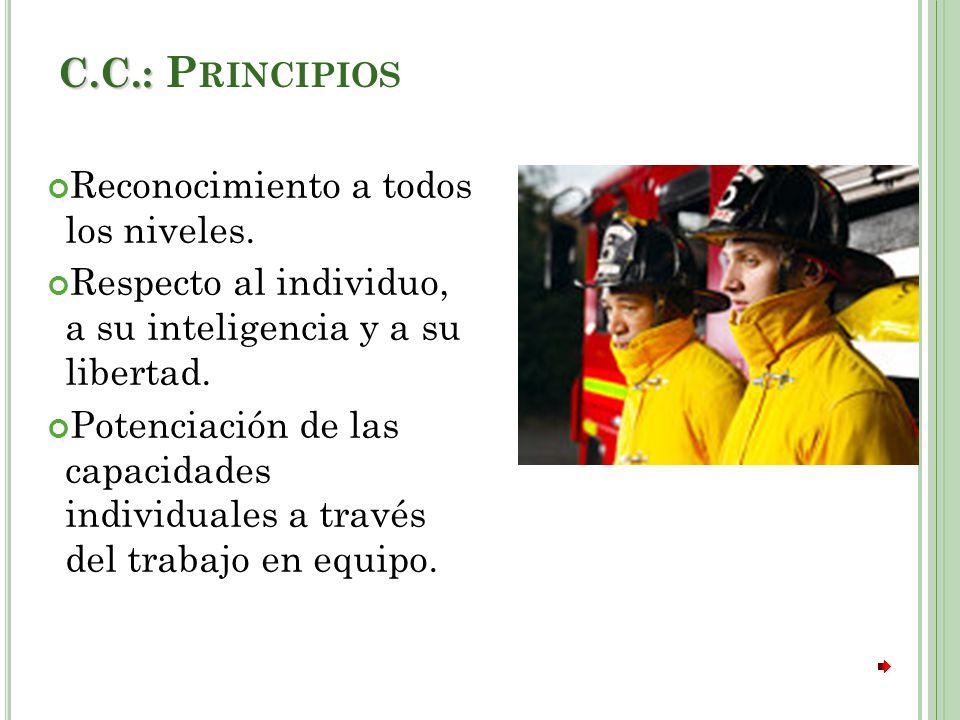 C.C.: Principios Reconocimiento a todos los niveles.