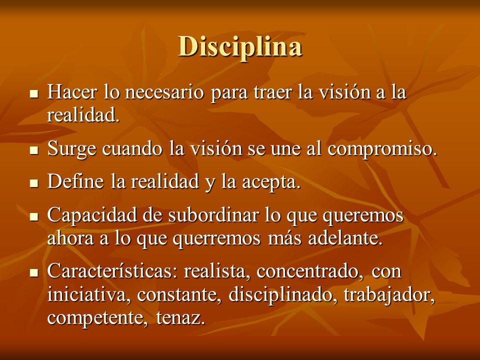 Disciplina Hacer lo necesario para traer la visión a la realidad.