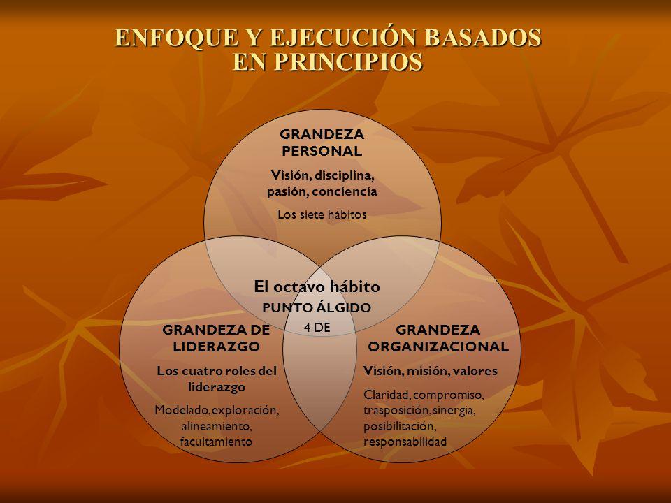 ENFOQUE Y EJECUCIÓN BASADOS EN PRINCIPIOS