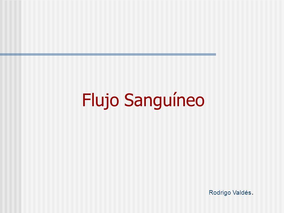 Flujo Sanguíneo Rodrigo Valdés.