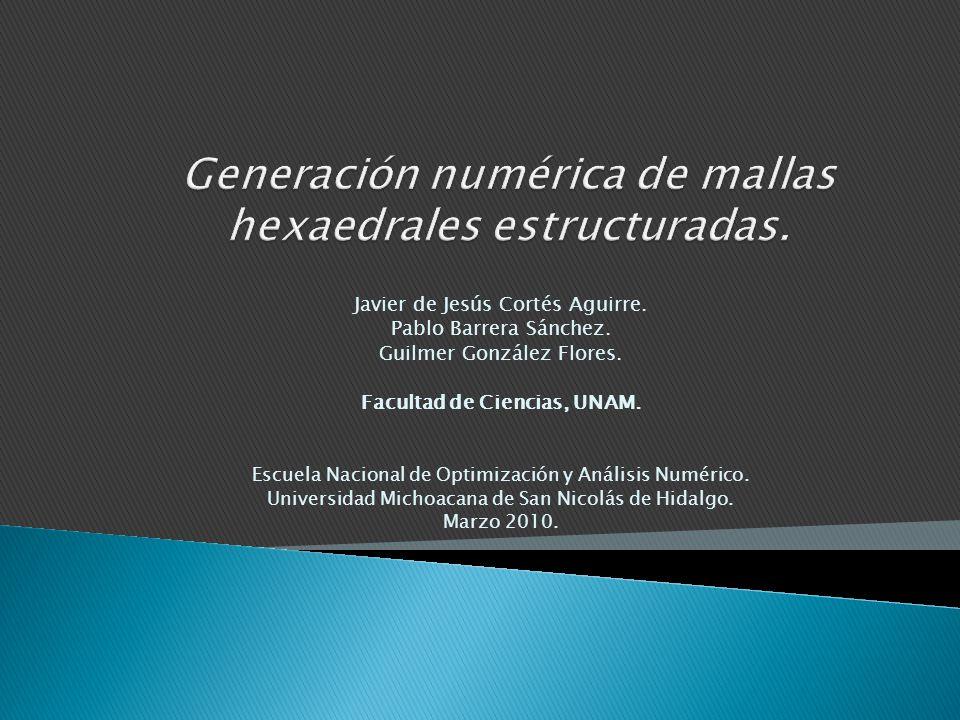 Generación numérica de mallas hexaedrales estructuradas.