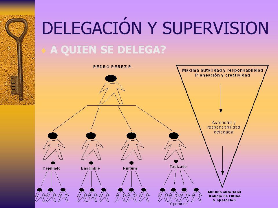 DELEGACIÓN Y SUPERVISION