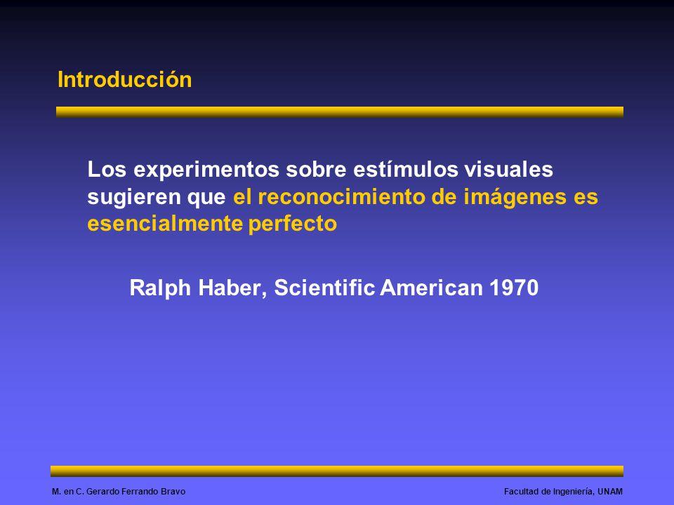 Introducción Los experimentos sobre estímulos visuales sugieren que el reconocimiento de imágenes es esencialmente perfecto.