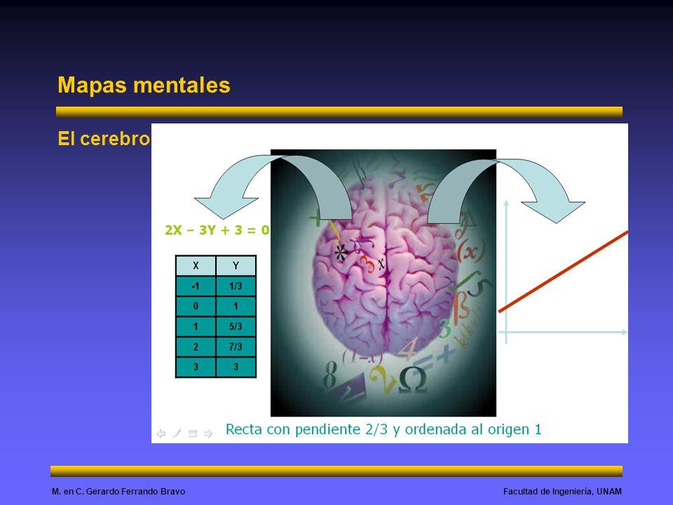 Mapas mentales El cerebro