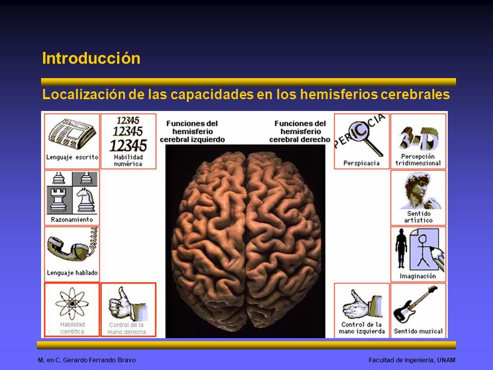 Introducción Localización de las capacidades en los hemisferios cerebrales