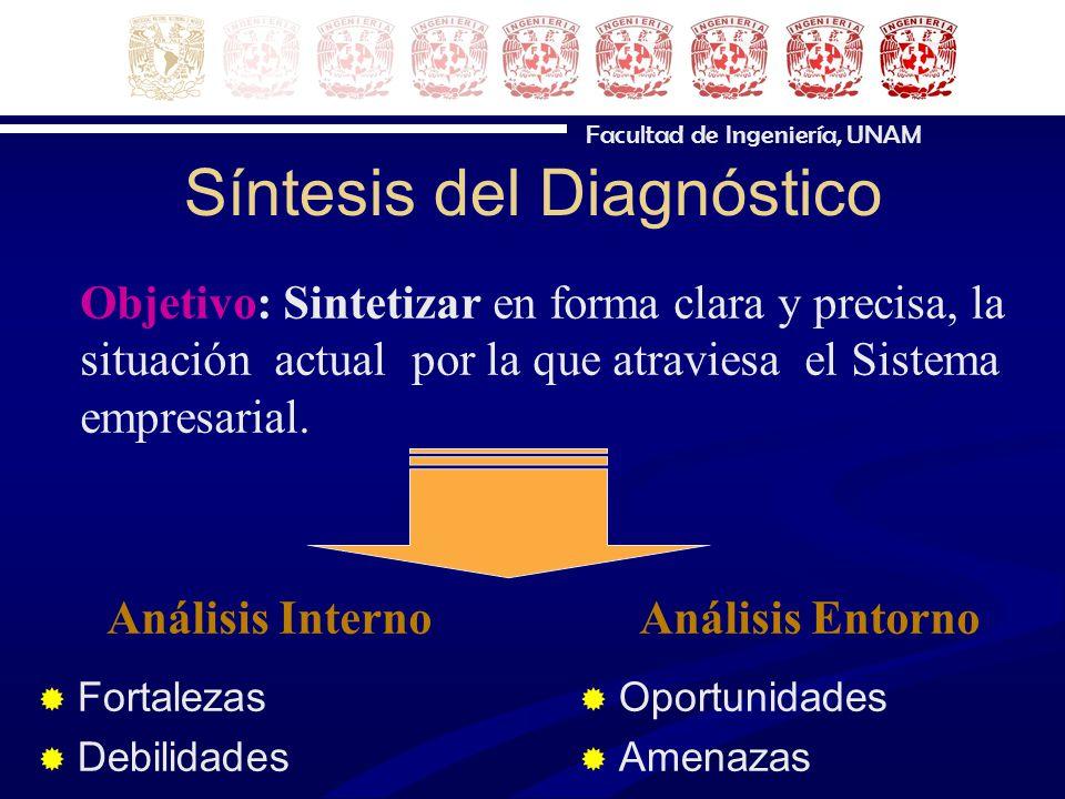 Síntesis del Diagnóstico