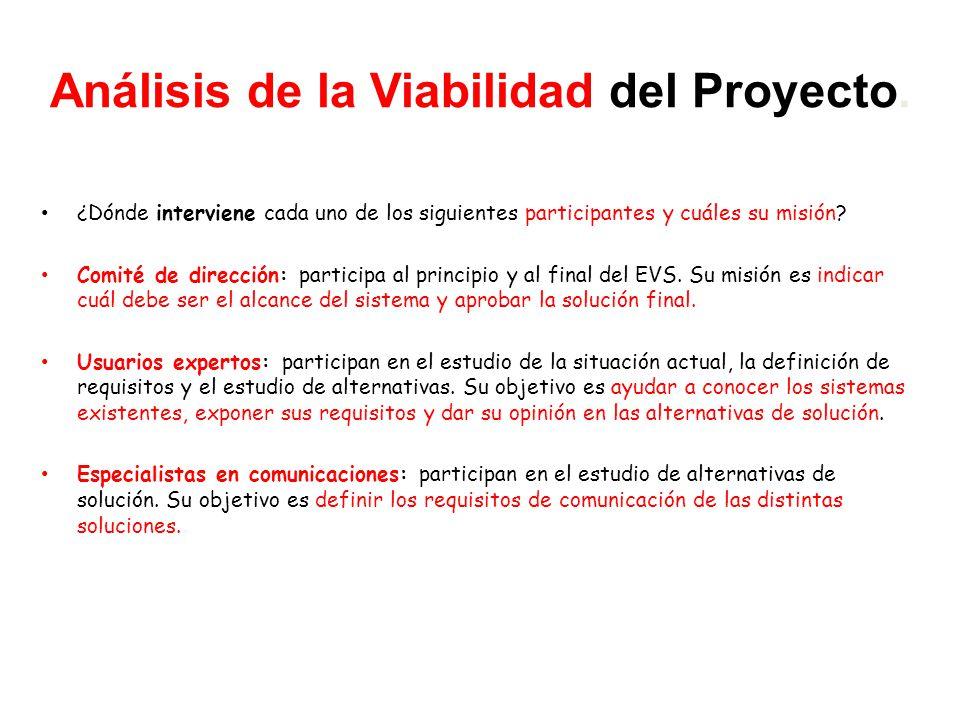 Análisis de la Viabilidad del Proyecto.