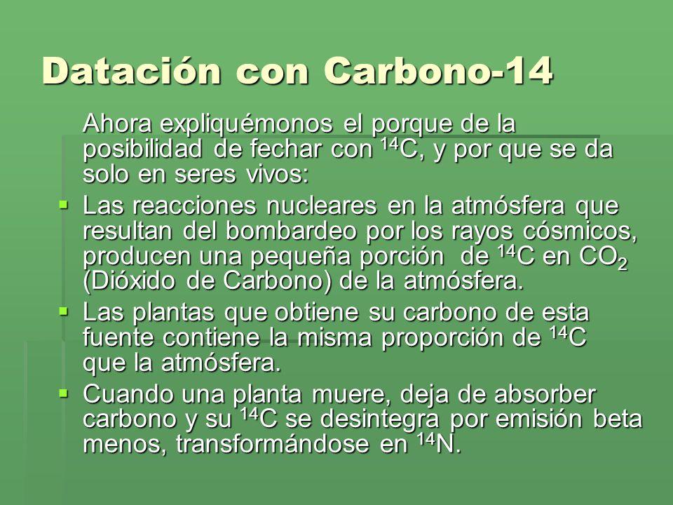 Datación con Carbono-14 Ahora expliquémonos el porque de la posibilidad de fechar con 14C, y por que se da solo en seres vivos: