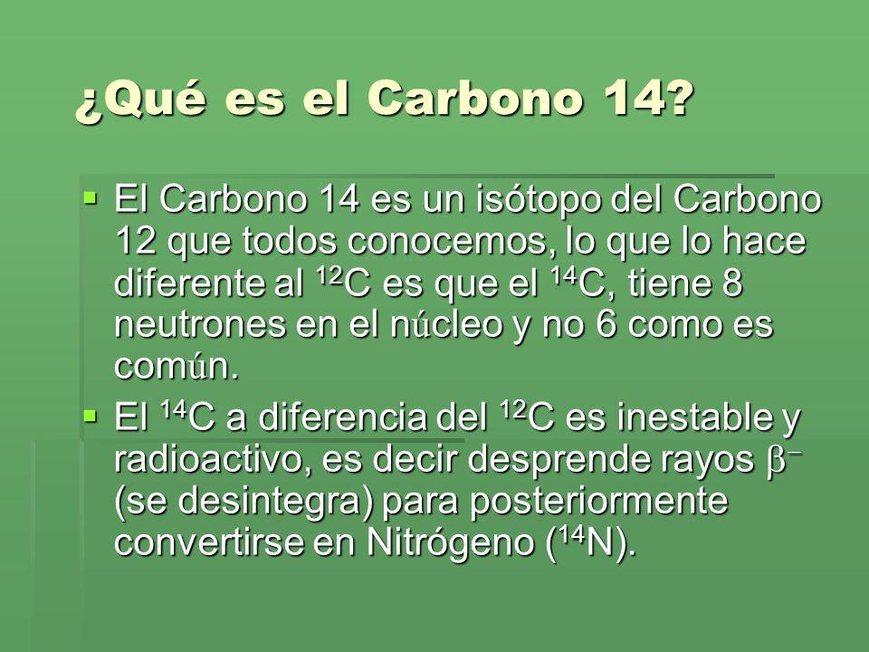¿Qué es el Carbono 14