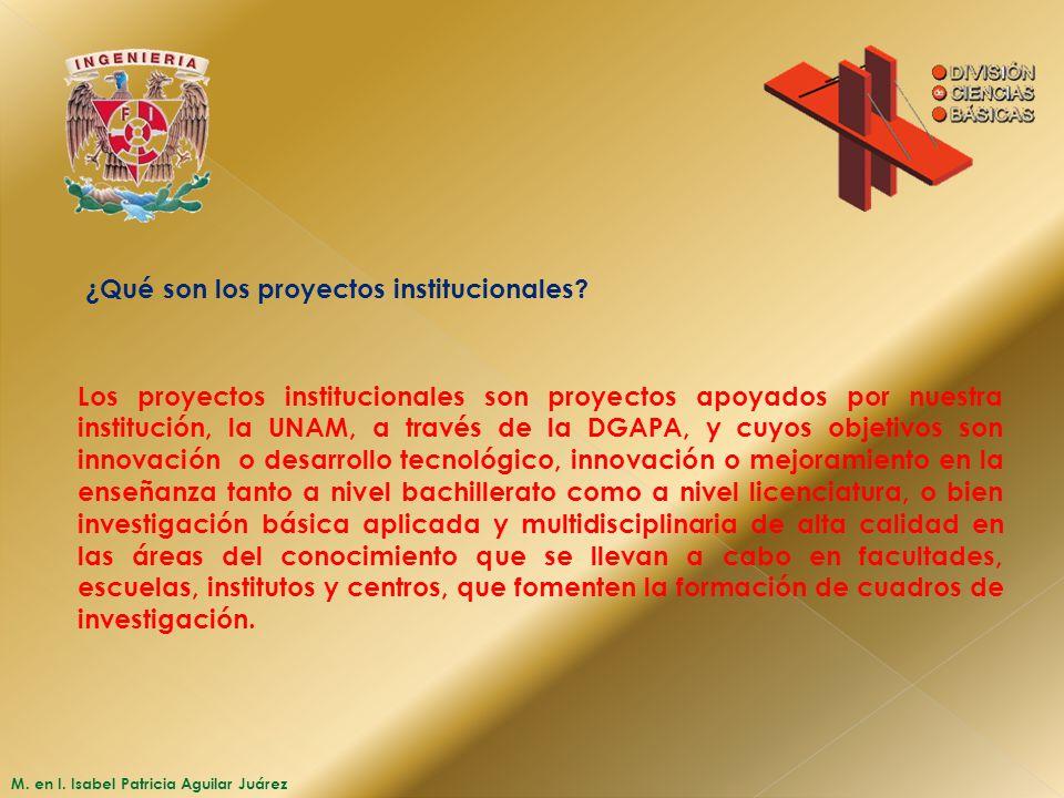 ¿Qué son los proyectos institucionales