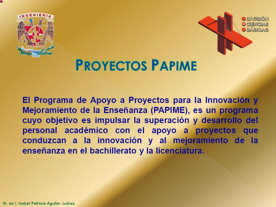 Proyectos Papime
