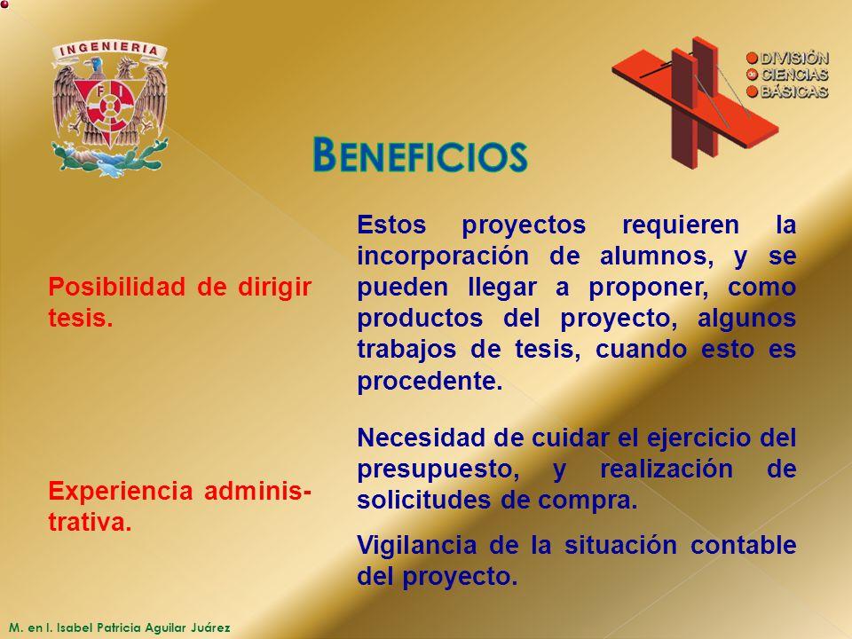 Beneficios Posibilidad de dirigir tesis.