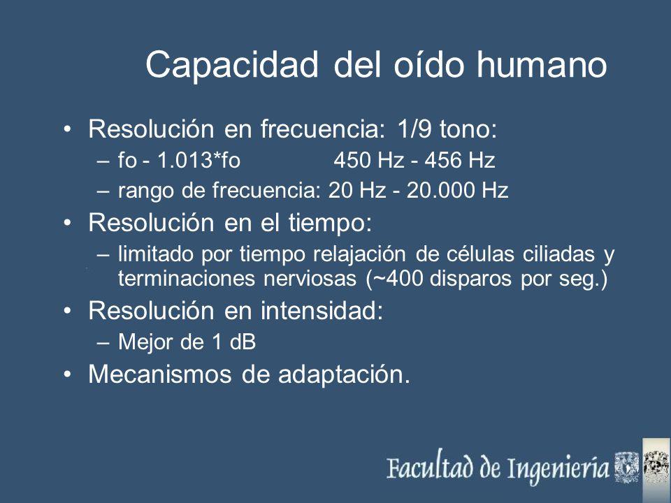 Capacidad del oído humano