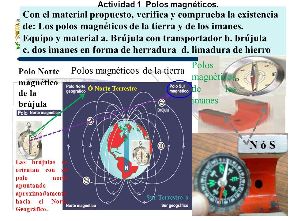 Actividad 1 Polos magnéticos.